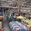 Завод Пежо в Калуге